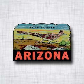 Arizona Road Runner