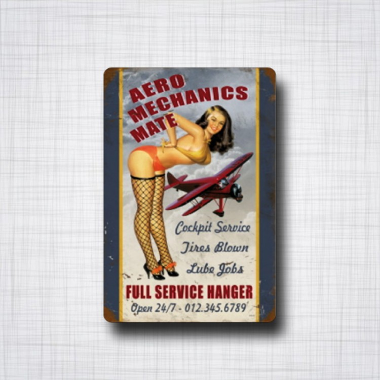 Aero Mechanics Mate