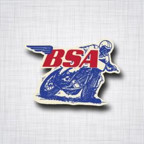 BSA Dirt Track